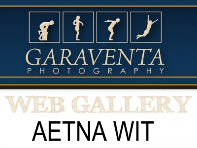 AETNA WIT