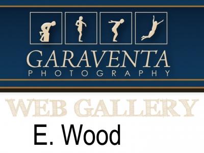 E. Wood
